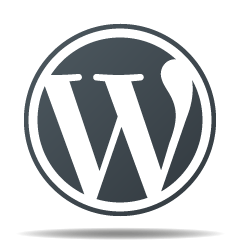 WordPress Kompetenz